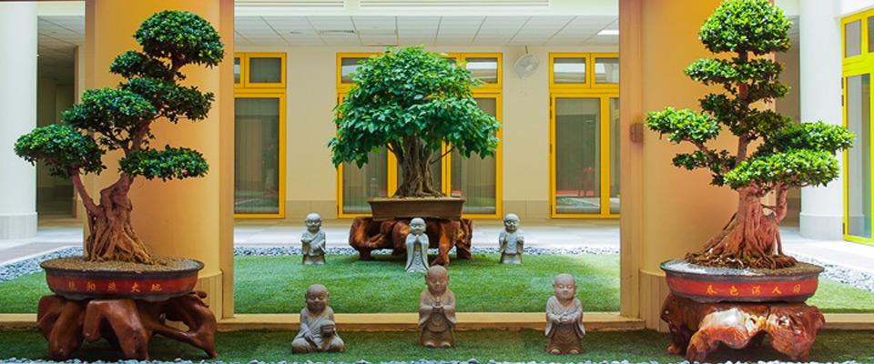 bcs-garden